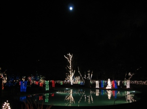 A Christmas display at a hotel near the Grand Canyon - reflections in the pool.